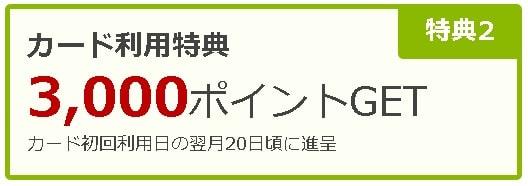楽天カード新規入会キャンペーンの利用でもらえるポイント3000